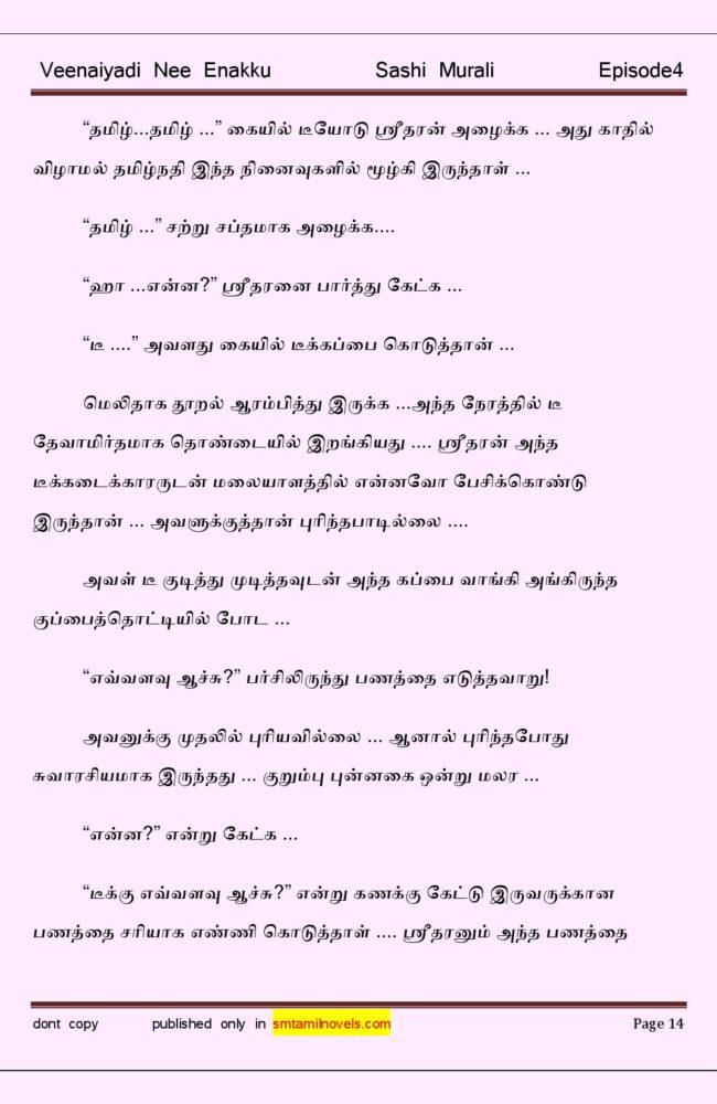 vne4-page-014