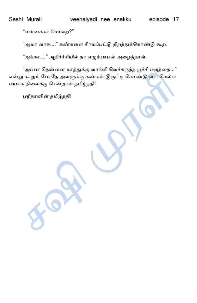 vne17-page-012